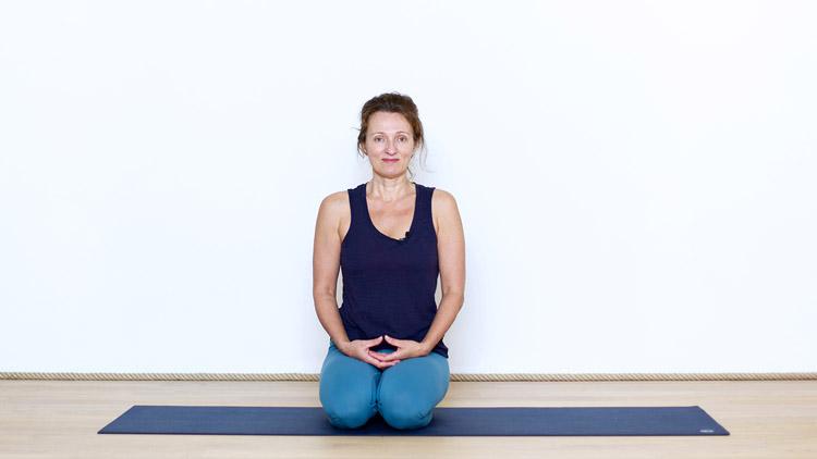Parcours d'introduction au Yoga Vinyasa : Présentation | Cours de yoga en ligne avec Delphine Denis | Yoga Vinyasa