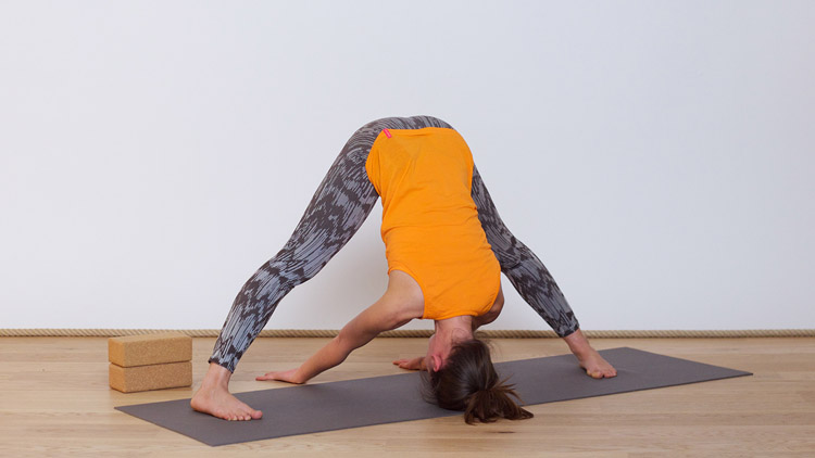 Toma la clase online de Yoga de Flujo Calmante al final del día con Elodie Prou   Vinyasa Yoga